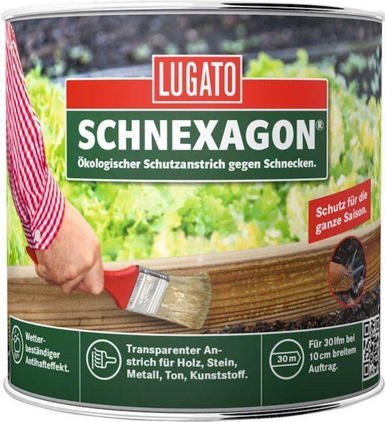 Schnexagon 1 e1505487143220