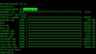 OpenBSD 6.6 mit automatischen System-Updates